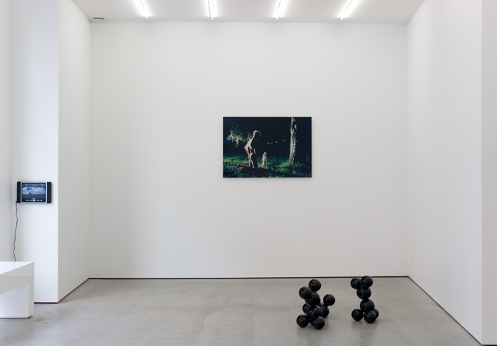 Bunnies, Installation view 2009